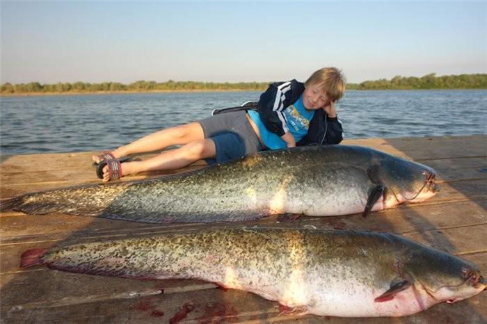 где самое лучшее преследовать рыбу низший новгород
