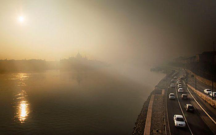 В туманной пелене. Автор: Tamas Rizsavi.