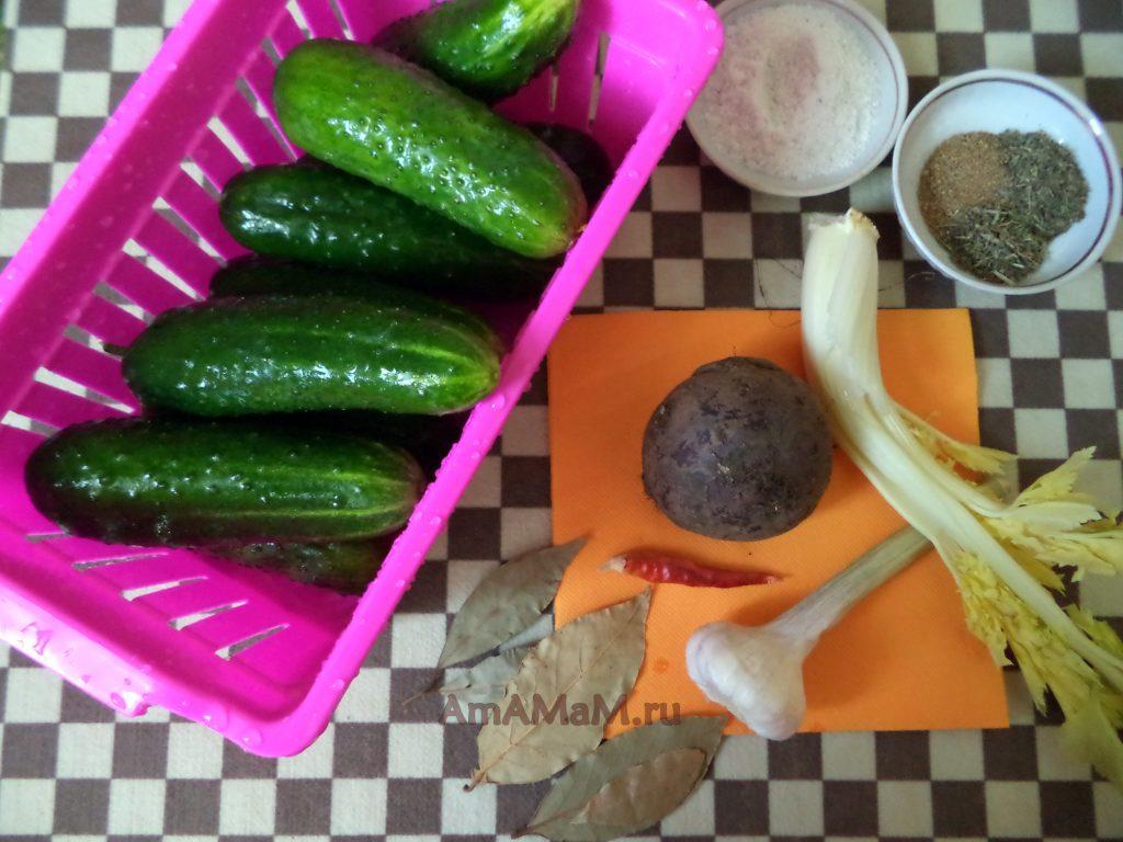 Оригинальные рецепты засолки малосольных огурцов - рецепт со свеклой по-абхазски