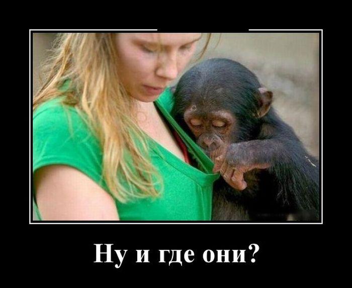 Вам это знакомо?
