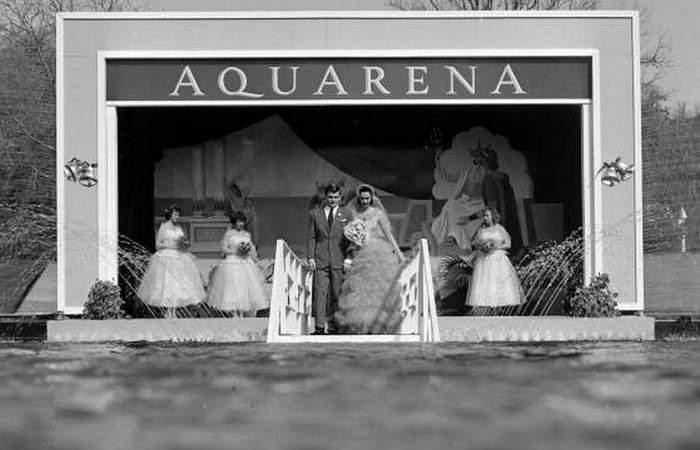 Экстрим прошлого века: свадьба под водой как альтернатива традиционной церемонии