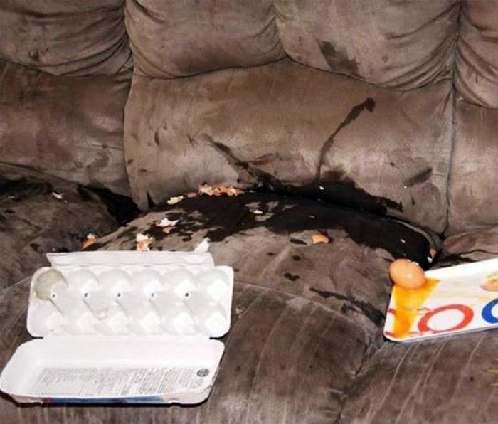 Разбитые яйца на диване.