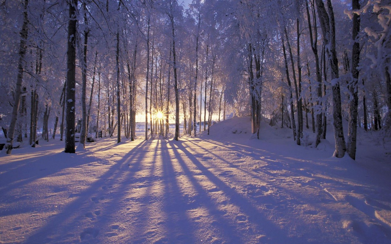 Природа России: красавица зима