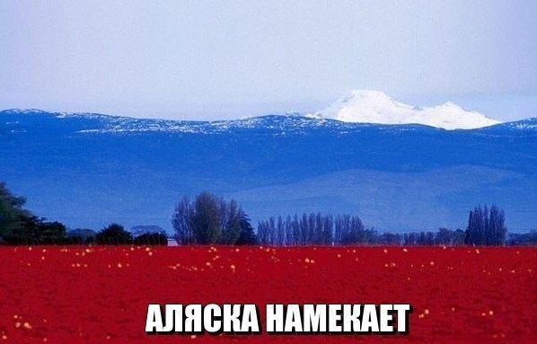ПРИКОЛЬНЫЕ КАРТИНКИ С НАДПИСЯМИ.ЭДВАЙСЫ-46.