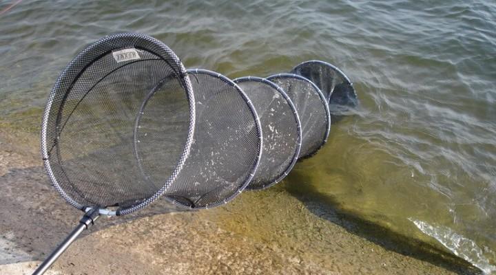 Рыбалка садок своими руками