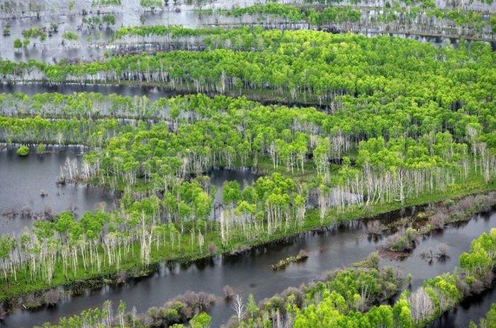 Левый приток Амура, образована слиянием рек Сулук и Аякит на склонах Буреинского хребта.