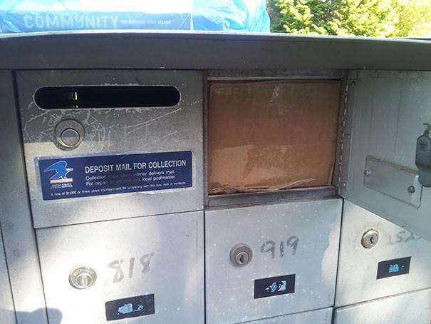 Филигранная работа dhl, fail, fedex, доставка, доставка из ада, почта, почтовые службы, упс