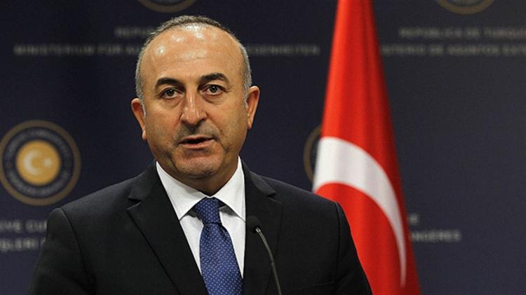 МИД Турции: убийца Карлова был связан со сторонниками Гюлена