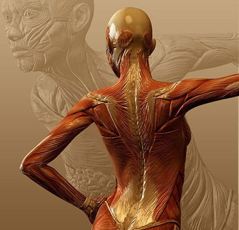 ПМС: 15 натуральных средств для облегчения симптомов
