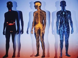 15 интересных трюков для вашего тела