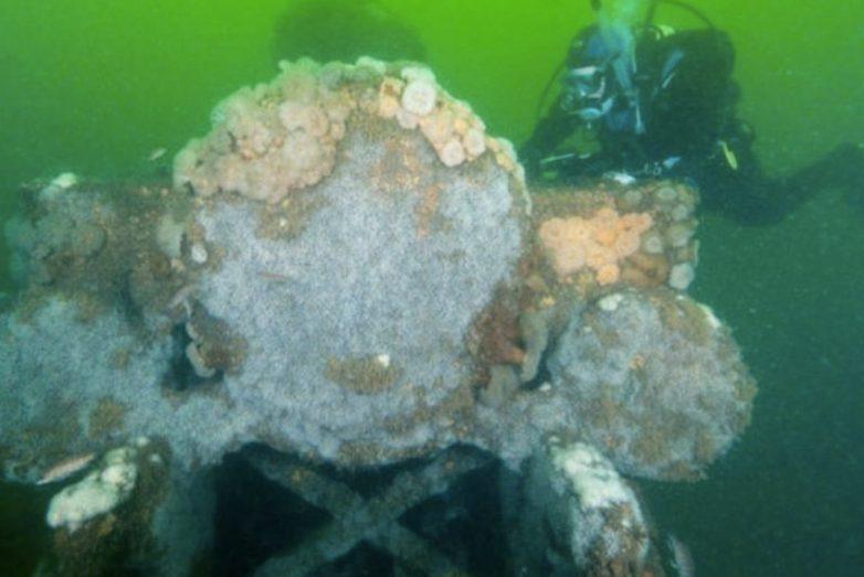Что скрывают морские глубины