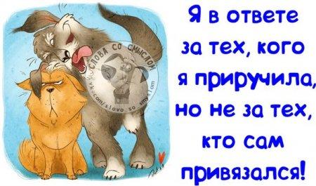Утро. Жена мужу: - Вася, вставай, на работу пора... Вставай... Ну, Вася... Нет, Вася, весь вставай...