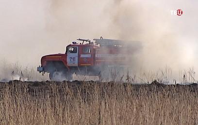 Почти 100 тыс. га леса горит в регионах России