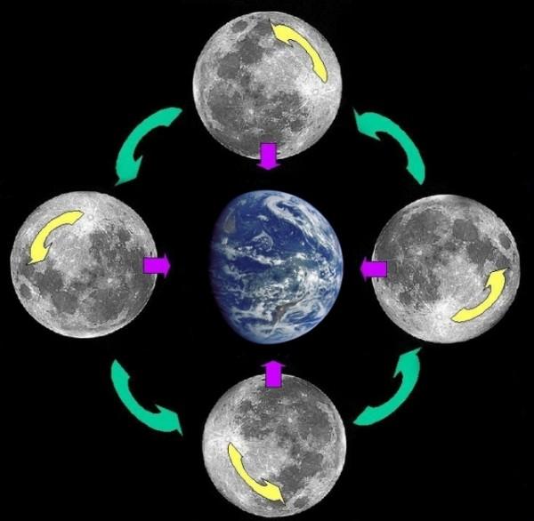 """А все же """"Как вращается Луна?"""""""