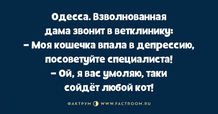 Таки новые анекдоты из Одессы, шобы вы смогли избавиться от плохого настроения