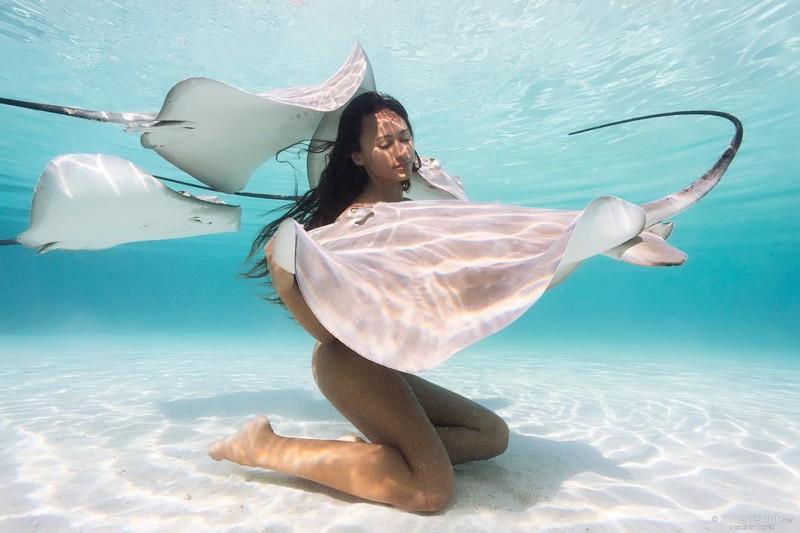 Обнаженная экстремалка купается в компании акул и скатов
