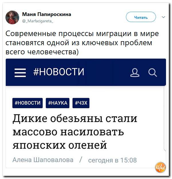 http://mtdata.ru/u1/photo7414/20661365705-0/original.jpg