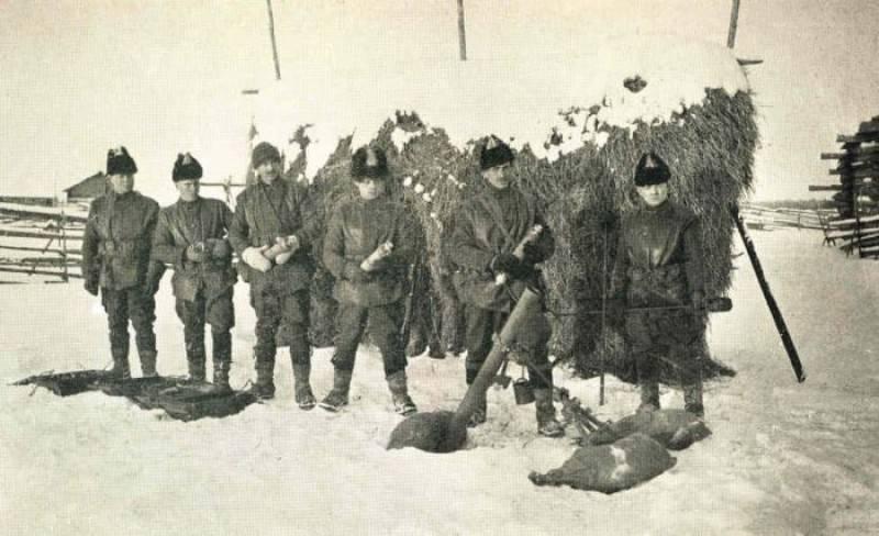 «Дан приказ ему на Север». Шенкурская операция 1919 г.