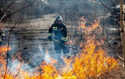 Площадь лесных пожаров в Забайкалье увеличилась вдвое