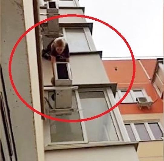 В Краснодаре девушка вылезла из окна балкона на 14 этаже, чтобы спасти кота