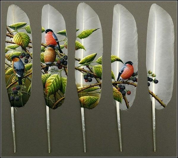 Искусство раскрашивать перья. Картины на лебединых перьях от Яна Дэйви (Ian Davie)