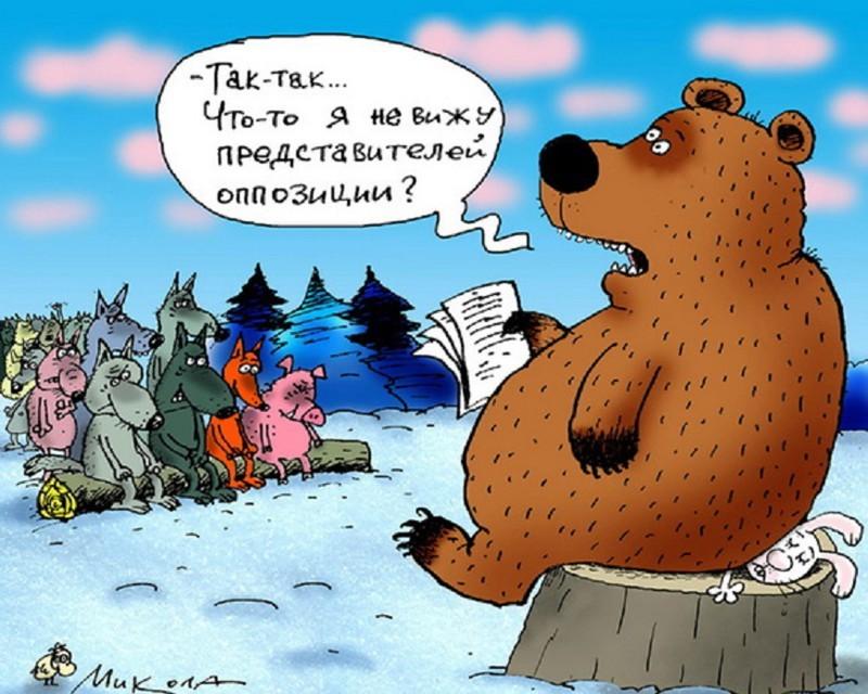 Сериал Политическая сказка, или Мир Медведя, цикл о природе