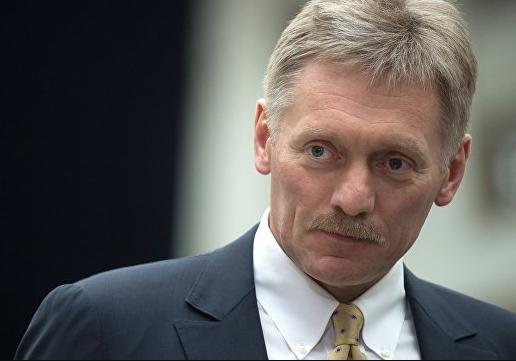 Песков прокомментировал выступление российского школьника в Бундестаге