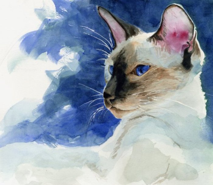 Кошачья грация: акварельные мурлыки, излучающие тепло и умиротворение