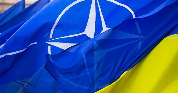 Ассамблея НАТО взяла Украину в свой капкан