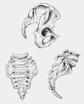 Записки травматолога
