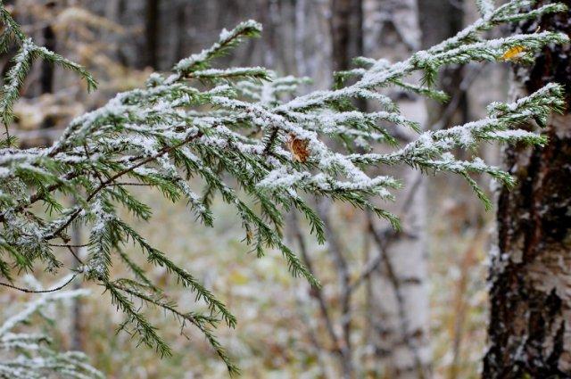 Южный Урал. Иремель. Неожиданная зима.
