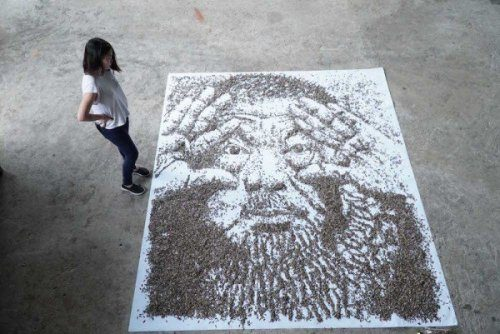 Портрет из 20 000 семян подсолнуха