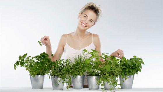 Самая полезная зелень на вашем столе