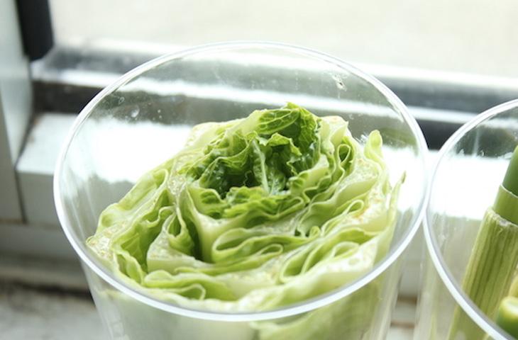 10 видов зелени, которые можно выращивать дома в воде