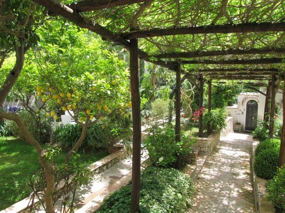 Сад на острове Капри