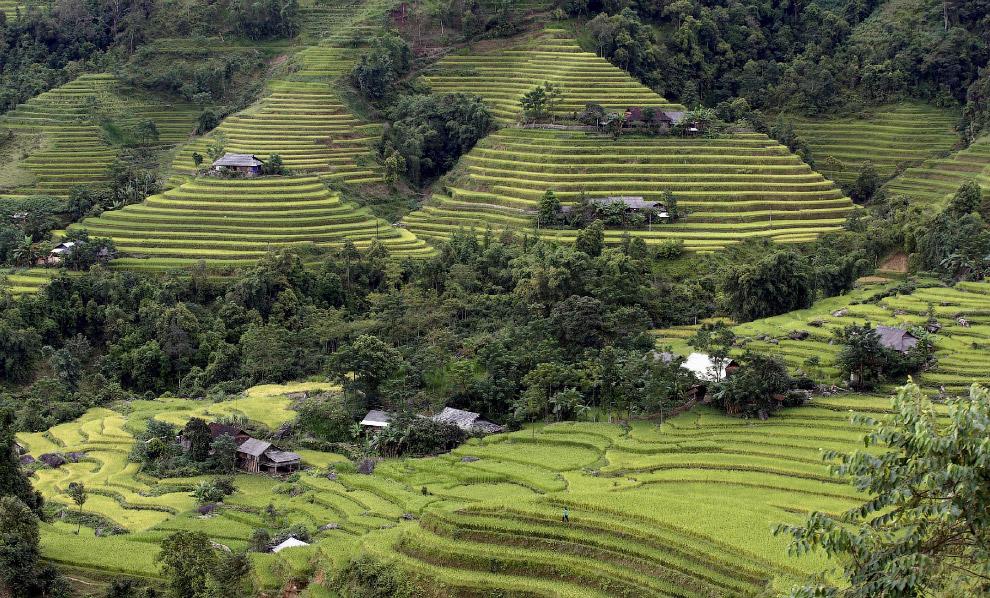 Будни Вьетнама