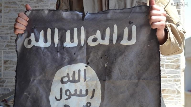Курды уничтожают лозунги ИГИЛ в освобожденных городах Ирака