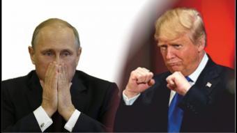 В странах НАТО обсуждают возможность убийства Путина и Трампа