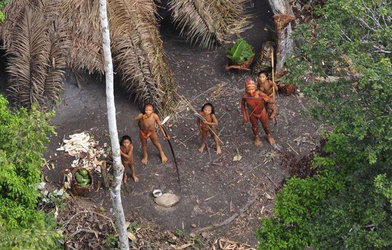 Сентинельцы изоляция, народы, неконтактные народы, племена, самоизоляция, удивительный мир, этносы