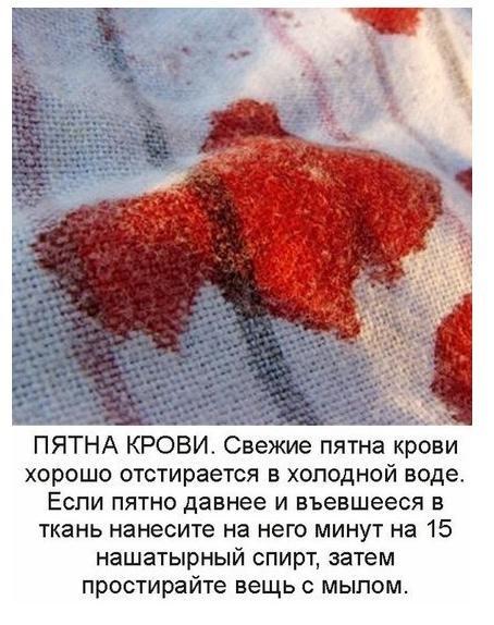 Чем вывести кровь в домашних условиях