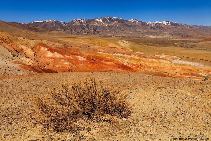 Марсианские пейзажи на Алтае