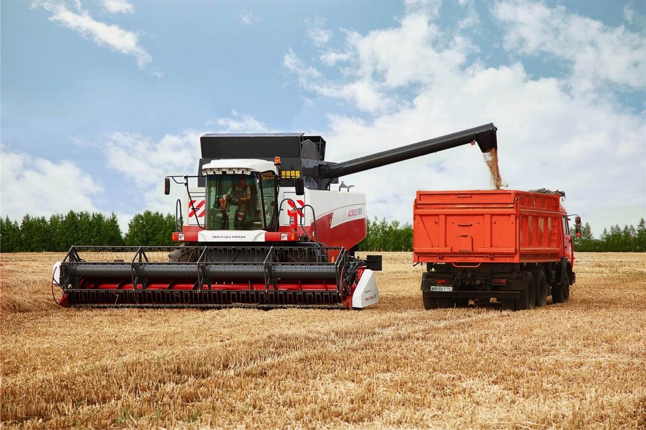 Минсельхоз России: на 16 октября собрано 131,4 млн тонн зерна