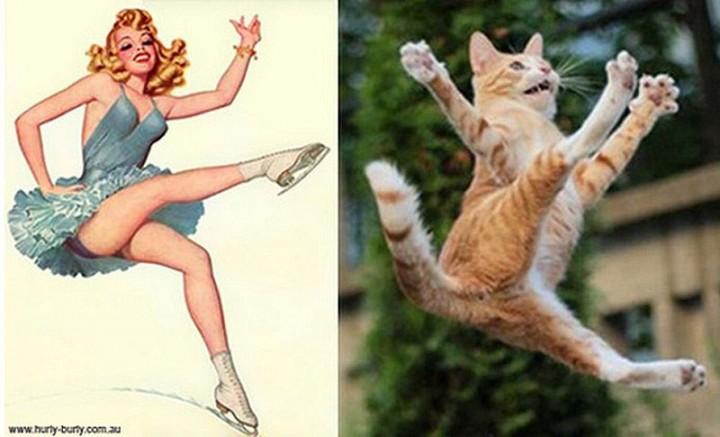 pinupcats08 Кошки и девушки в стиле пинап