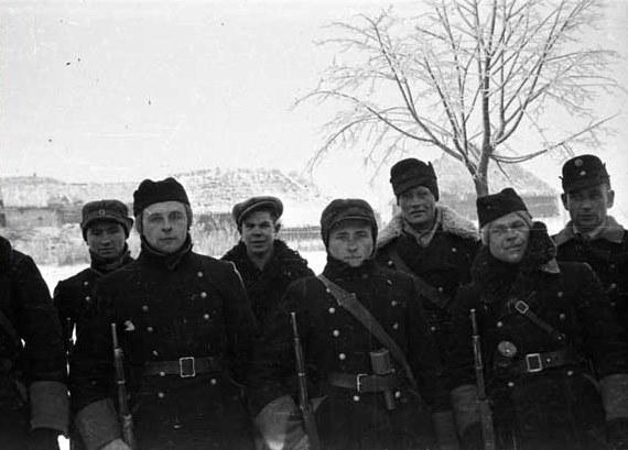 Украинские полицейские формирования. (репост) предатели, украина