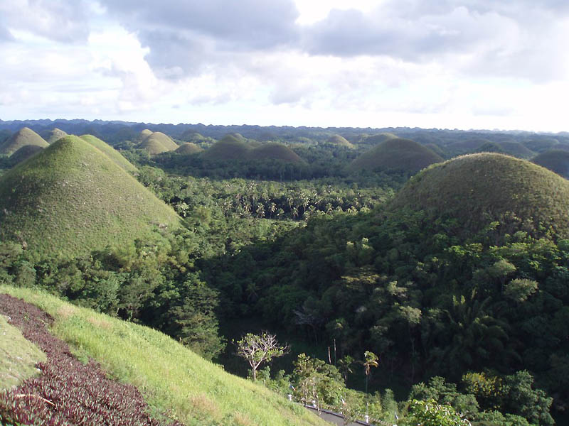 Шоколадные холмы острова Бохоль