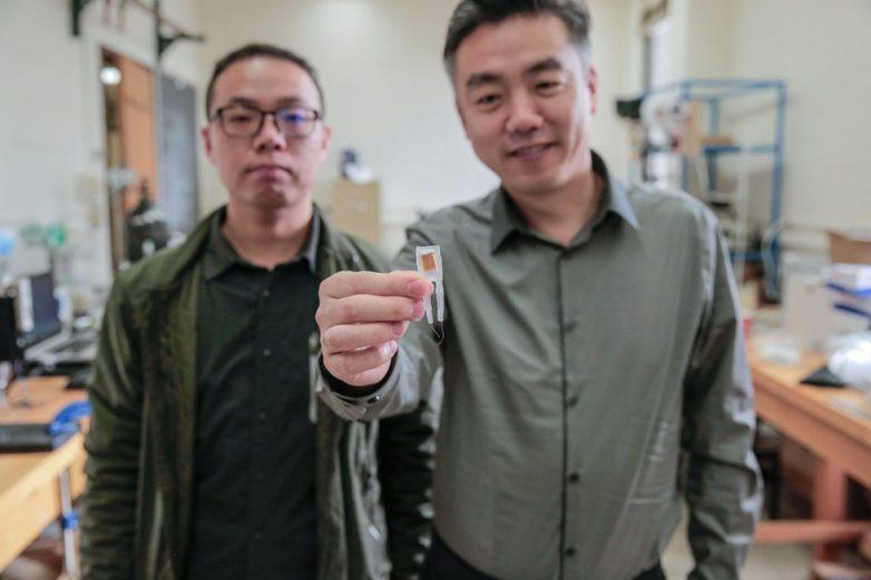 Учёные создали имплантат для похудения