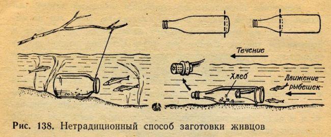 можно ли ловить щуку на капканы