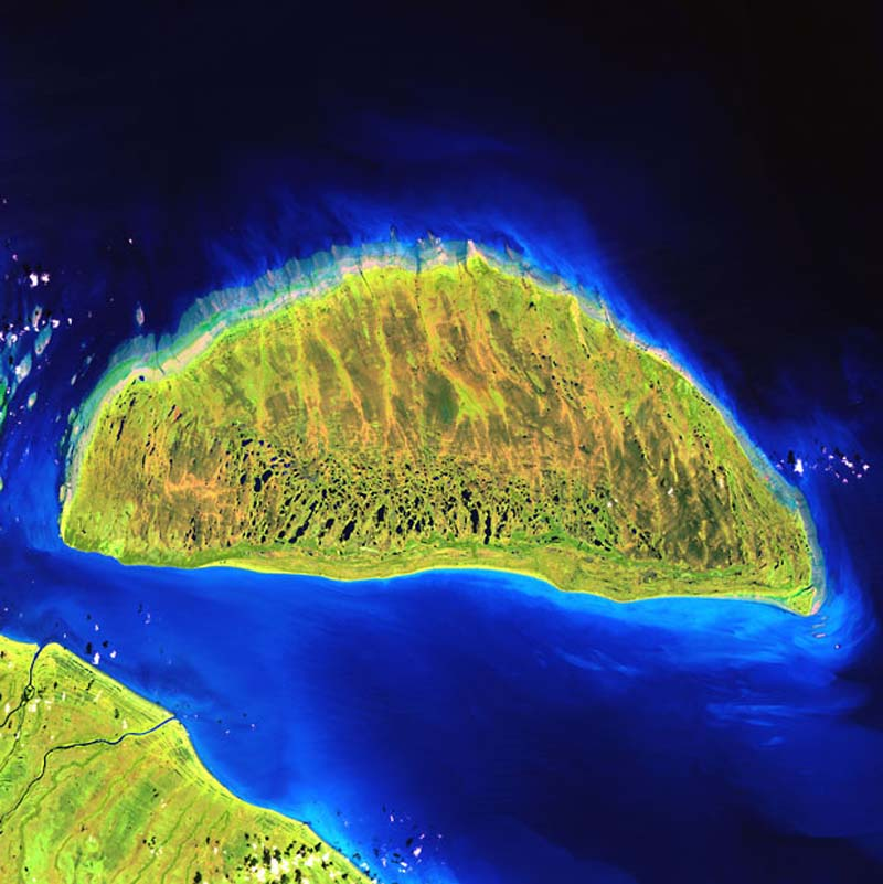 Landsatprogramme 12 Фото со спутника   Земля как произведение искусства