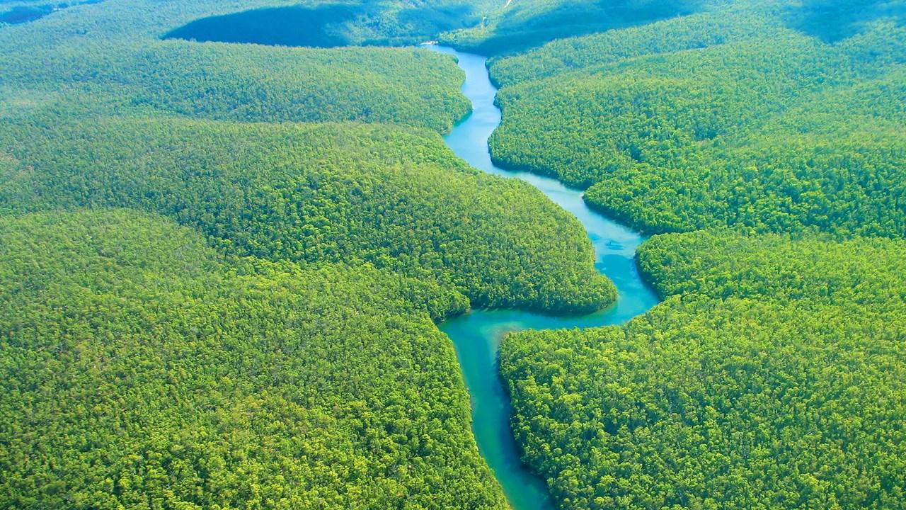 Амазонские джунгли – настоящий магнит для экстремалов