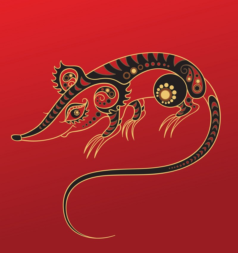 гороскоп на 2019 год все знаки зодиака